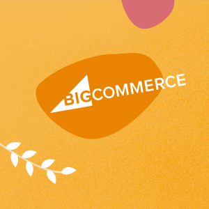 bigcommerce developer